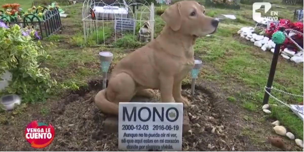 Un cementerio para mascotas - Foto: captura de pantalla.