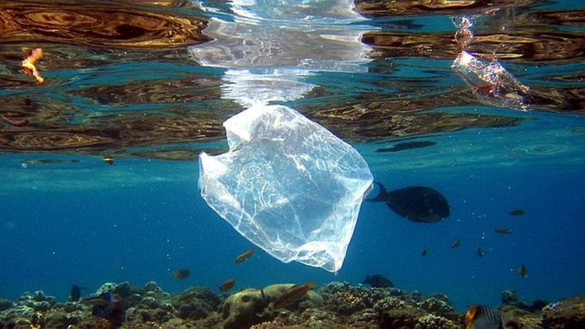 Proyecto busca prohibir las bolsas plásticas en San Andrés