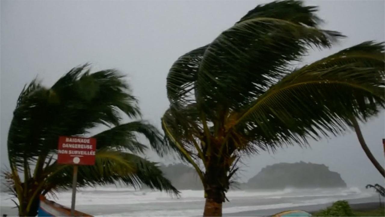 Famosos se solidarizan con Puerto Rico