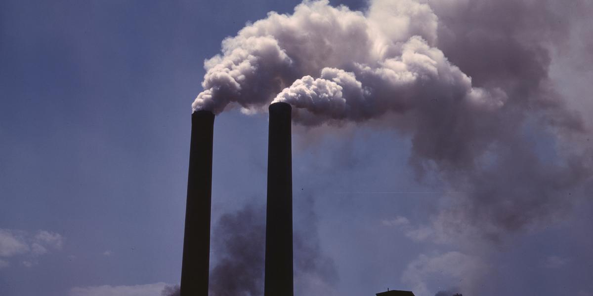 Una bacteria convierte las emisiones de gases industriales en combustibles
