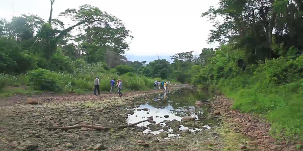 Ponencia mantiene suspensión de extracción de carbón en zona cercana a Arroyo Bruno