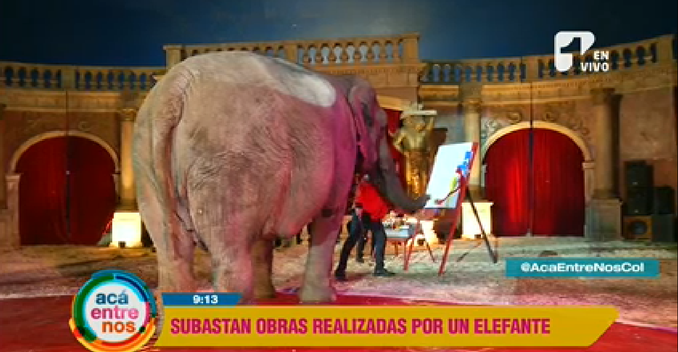 Sandrita, la elefante pintora que trabaja por salvar otros animales