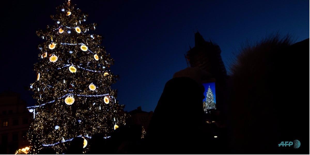 La historia del árbol de navidad - Foto: Michal CIZEK / AFP