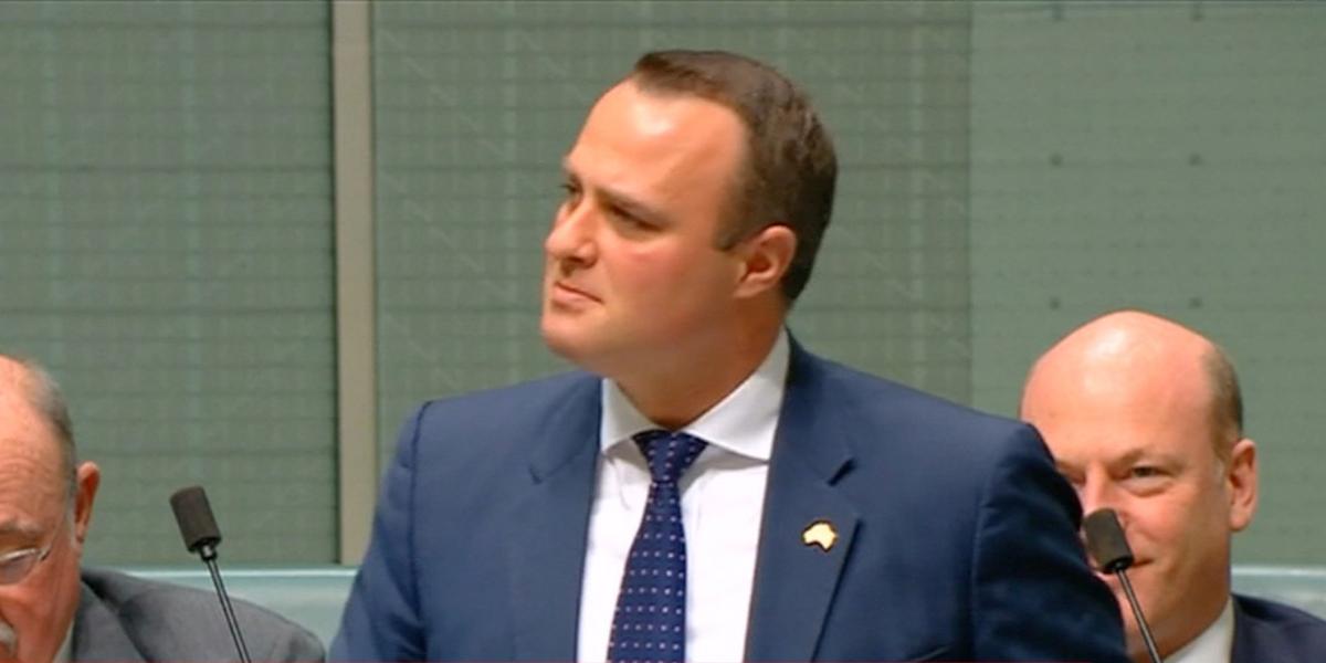 Parlamentario australiano pide matrimonio a su novio en pleno debate de unión homosexual