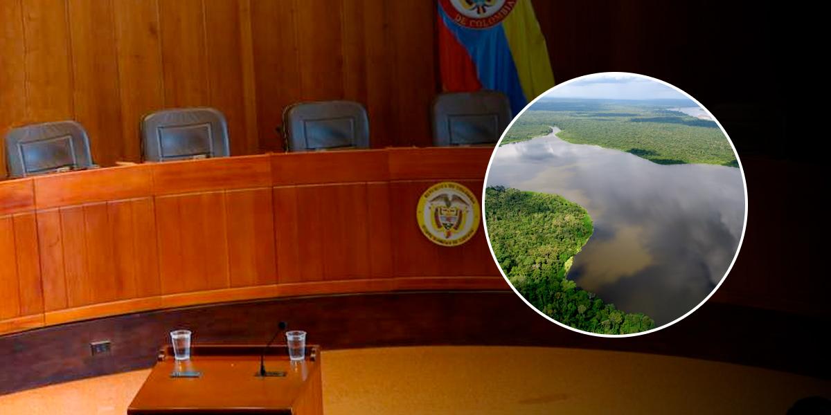 Corte Suprema ordena protección inmediata de la Amazonía colombiana