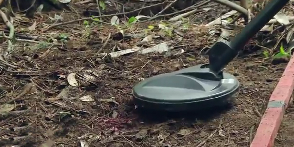 Colombia ha declarado 227 municipios libres de sospecha de minas antipersonal