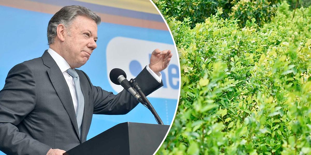 Santos responde a informe de EE.UU. sobre aumento de cultivos de coca