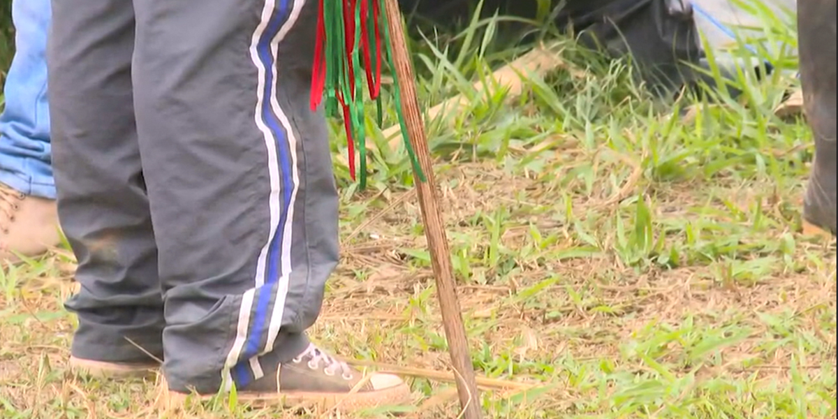 Atentan contra docente indígena en Valle del Cauca