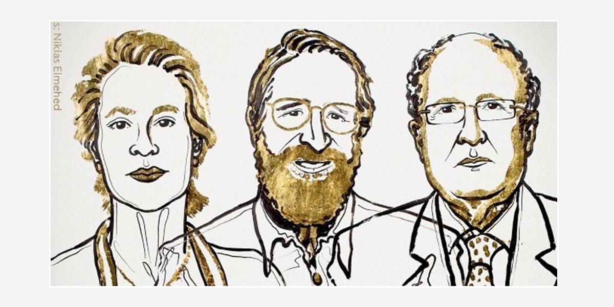 Arnold, Winter y Smith, Nobel de Química por desarrollo de proteínas
