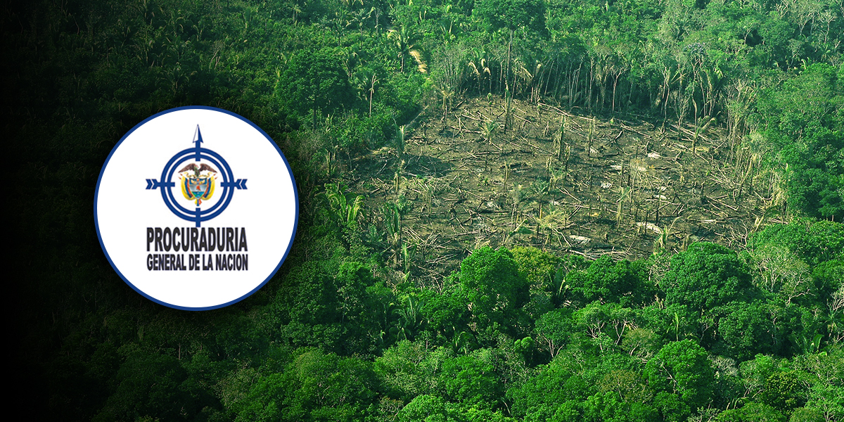 Exigen al Gobierno una política pública para enfrentar deforestación de la Amazonía