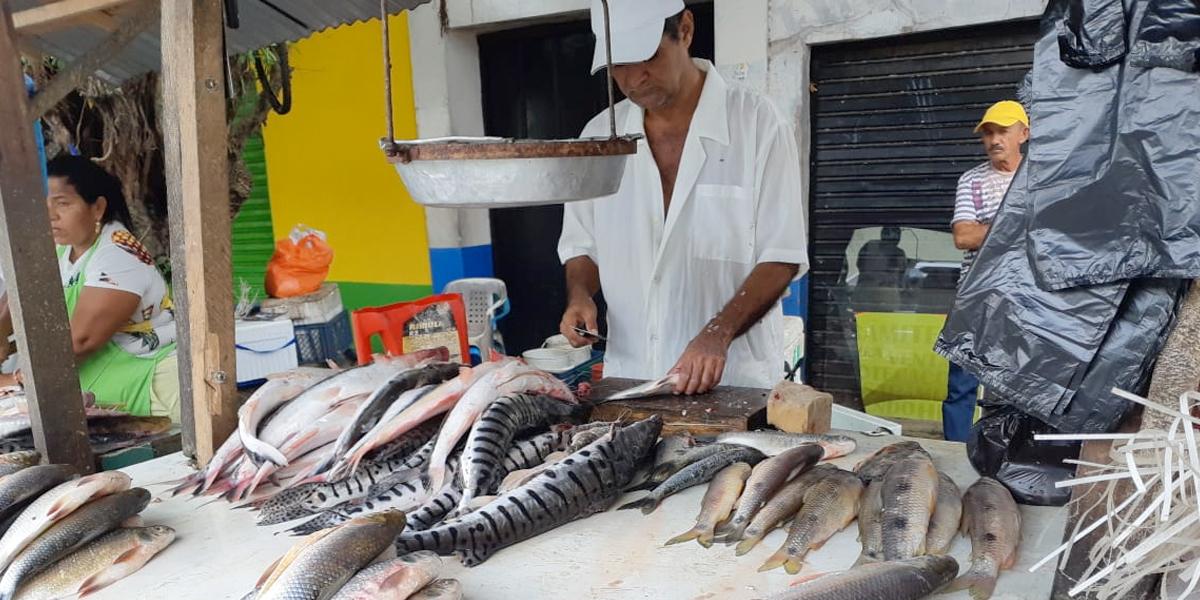 Ante crisis del río Cauca, pescado escasea y sube de precio más del 50 % en Caucasia