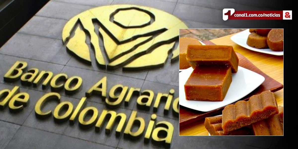 Tras crisis en el sector, Banco Agrario prorrogará créditos a paneleros