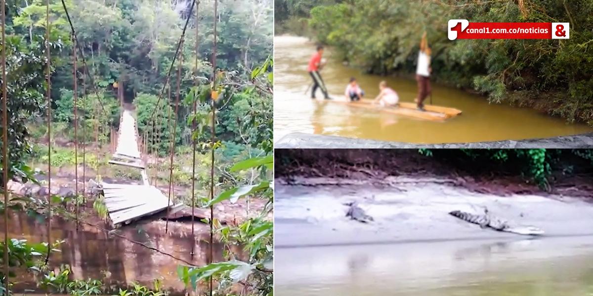 Corte protege derechos de niños que debían atravesar un río con caimanes