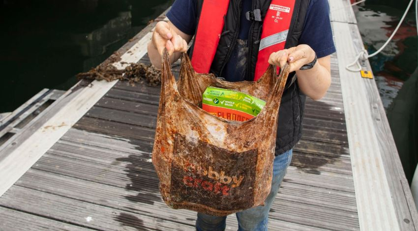 Científico comprobó que bolsas biodegradables no se degradan realmente