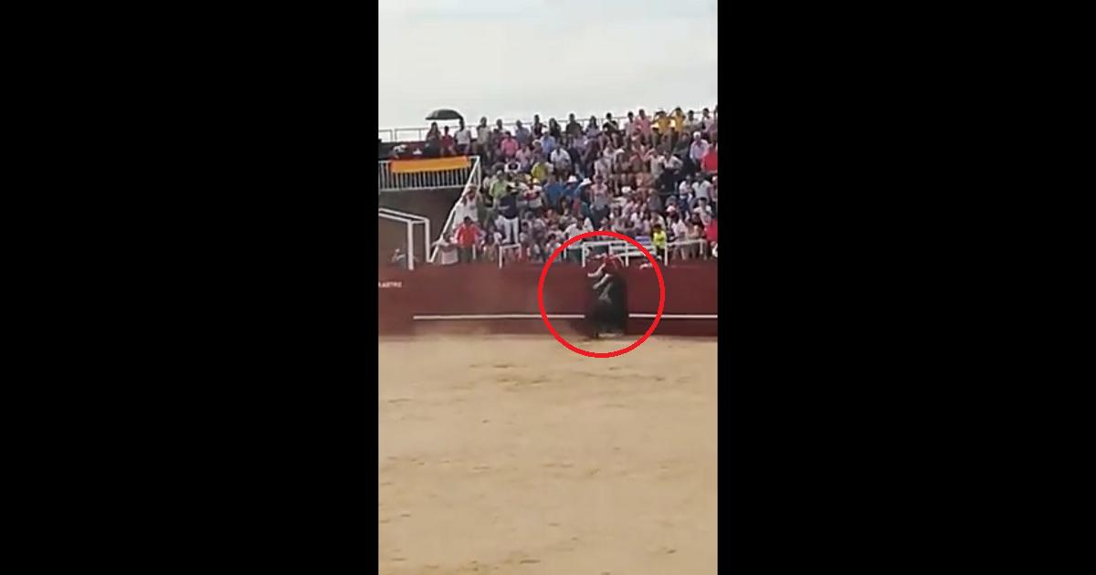 Murió de cornada en la plaza de Toros de Benavente mientras el público grababa