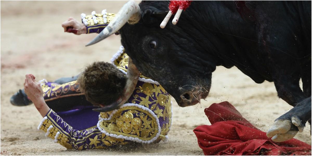 torero roman collado cornada españa