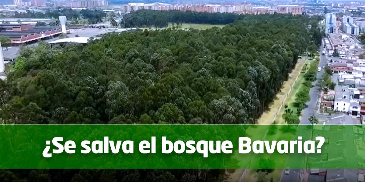 Ordenan suspender  tala de árboles en el bosque de Bavaria en Bogotá