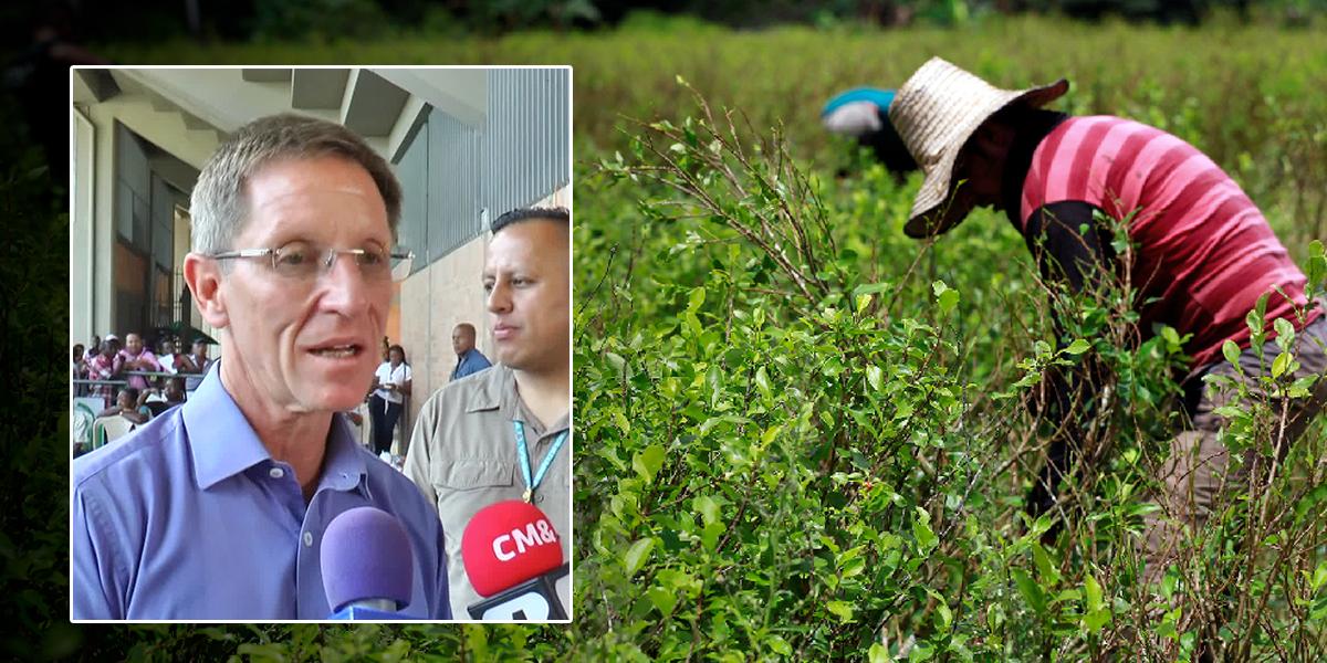 Gobierno refuerza medidas de seguridad para líderes de sustitución de cultivos
