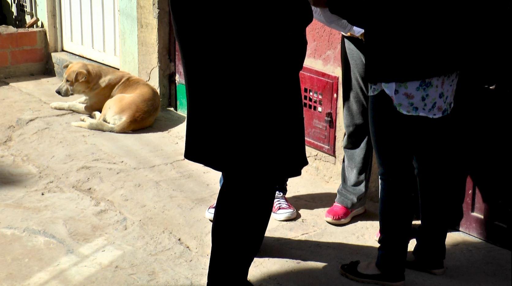 Un hombre volvió a atacar con cuchillo a un perro en Soacha