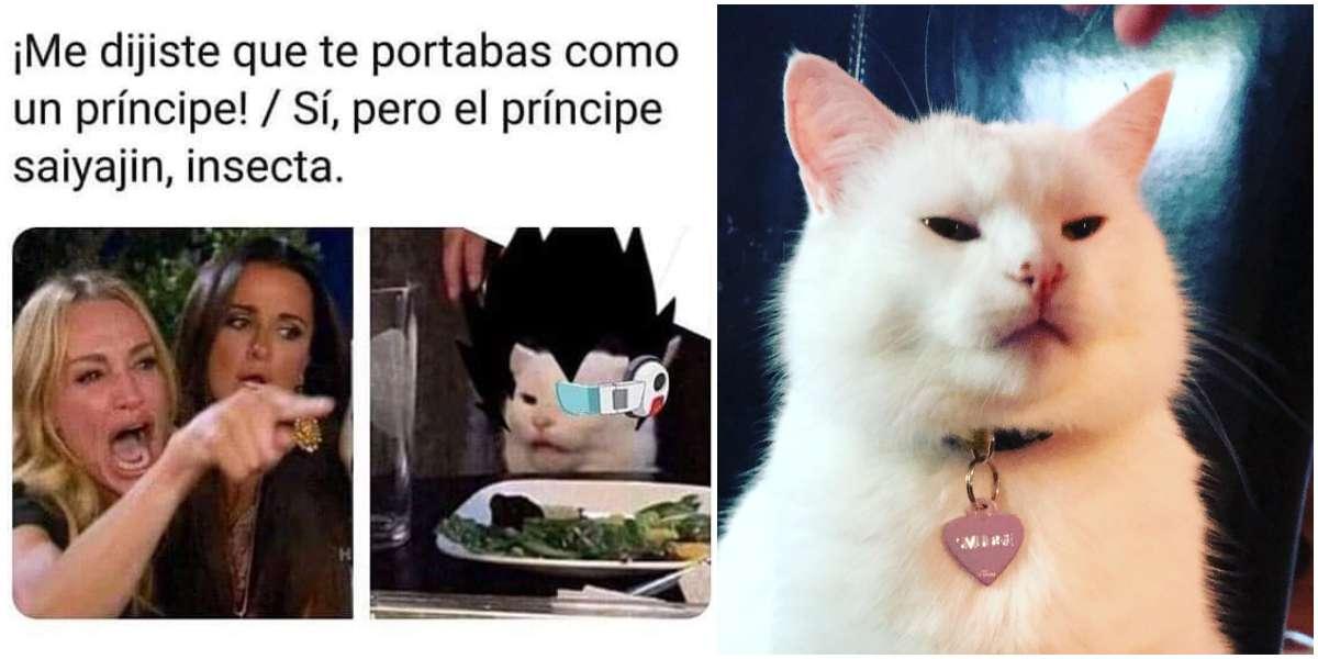 El verdadero origen del meme de la mujer reclamándole a un gato indolente
