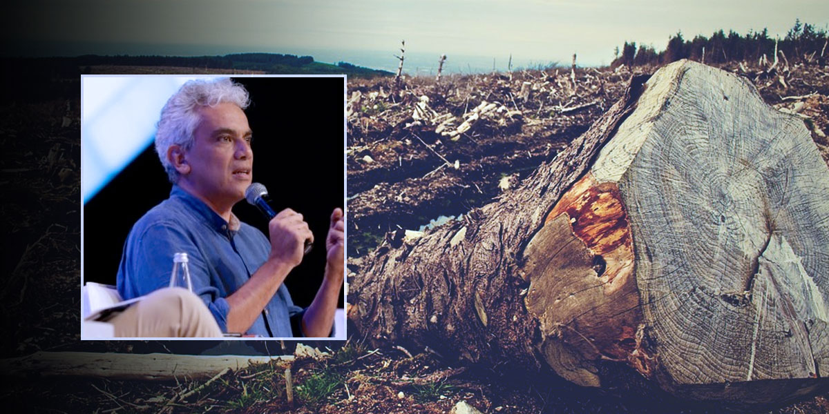 Colombia y Reino Unido destinan $2.000 millones para enfrentar deforestación en el país