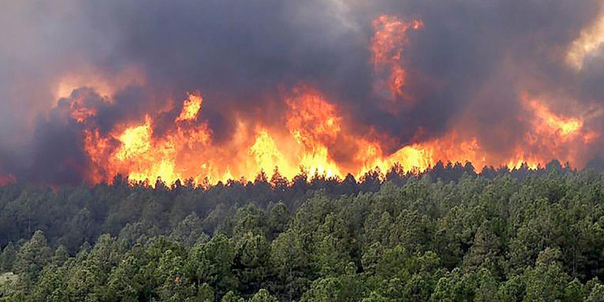 Alertas rojas y naranjas por incremento de incendios forestales en el país
