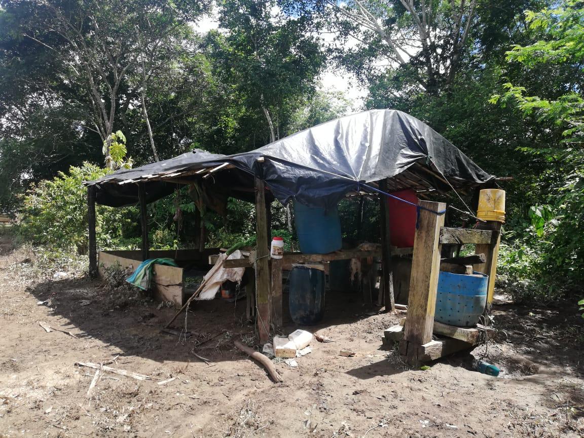 Policía desmantela dos laboratorios de cocaína en Vichada y Meta