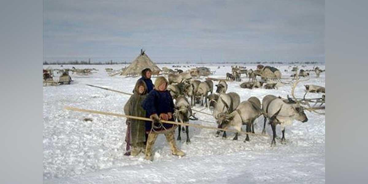 Ante el calentamiento global, indígenas del Ártico temen por su supervivencia