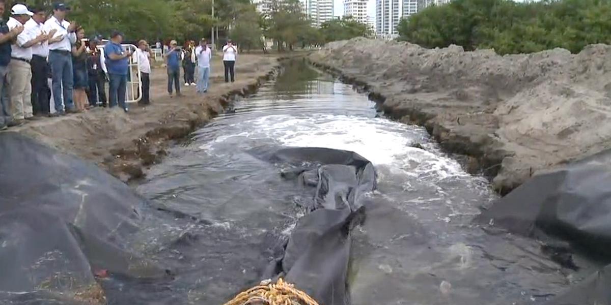 Tras mortandad de peces, instalan motobomba en El Laguito de Cartagena