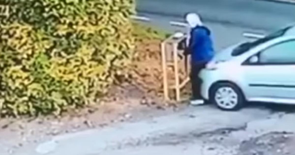 (Video) Mujer fue atropellada por su propio carro, sin conductor