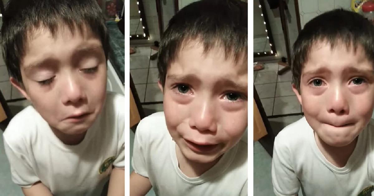 """""""La familia no sabe que está muerta"""": niño llora tras atropellar hormiga con su moto de juguete"""