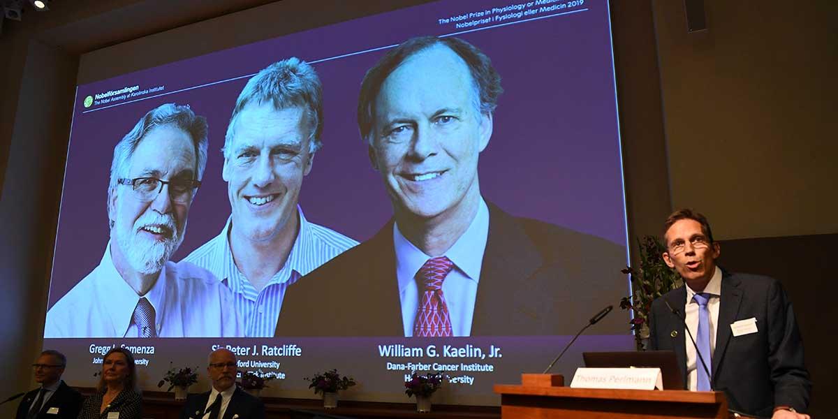 El estudio que les valió a tres médicos el premio Nobel de Medicina