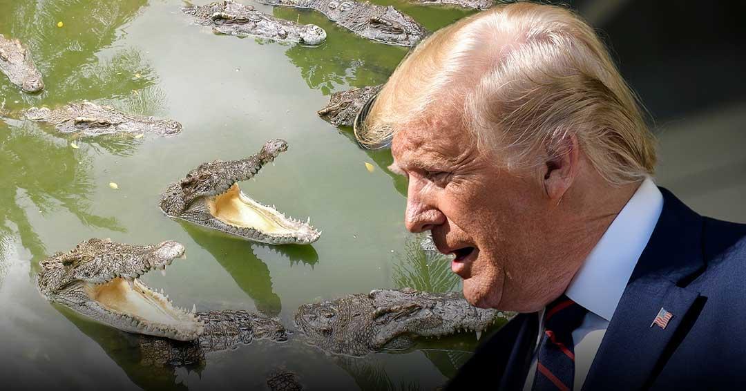 Trump niega haber pedido cocodrilos para detener a migrantes en la frontera