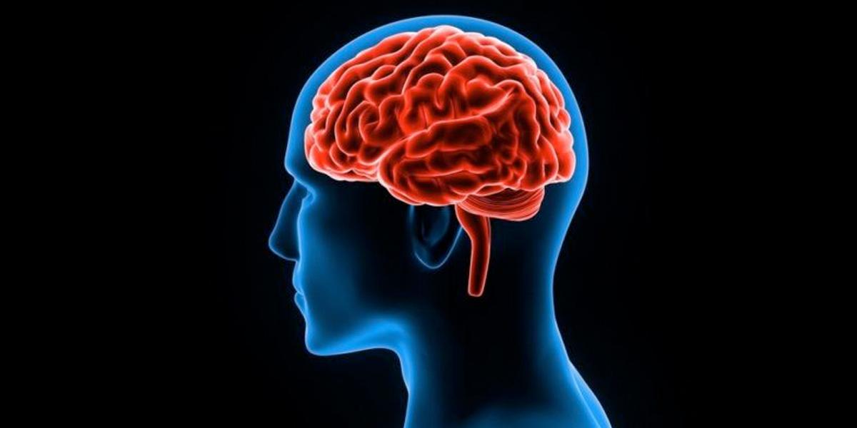 Desarrollan una aplicación que «clasifica» la salud mental del usuario en EE. UU.