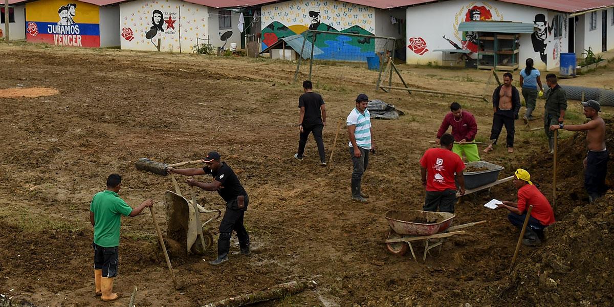 Desmovilizados de las Farc y campesinos se gradúan de técnicos agropecuarios en el Meta