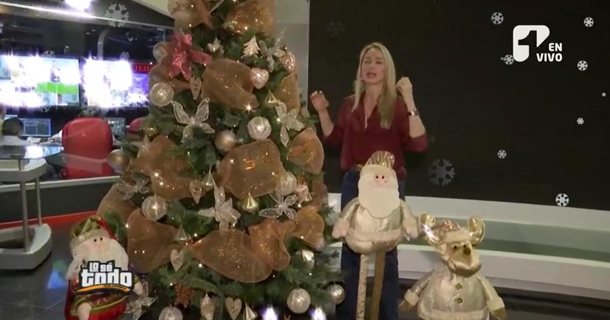 Los tips de Erika Taubert para armar adecuadamente el árbol de Navidad