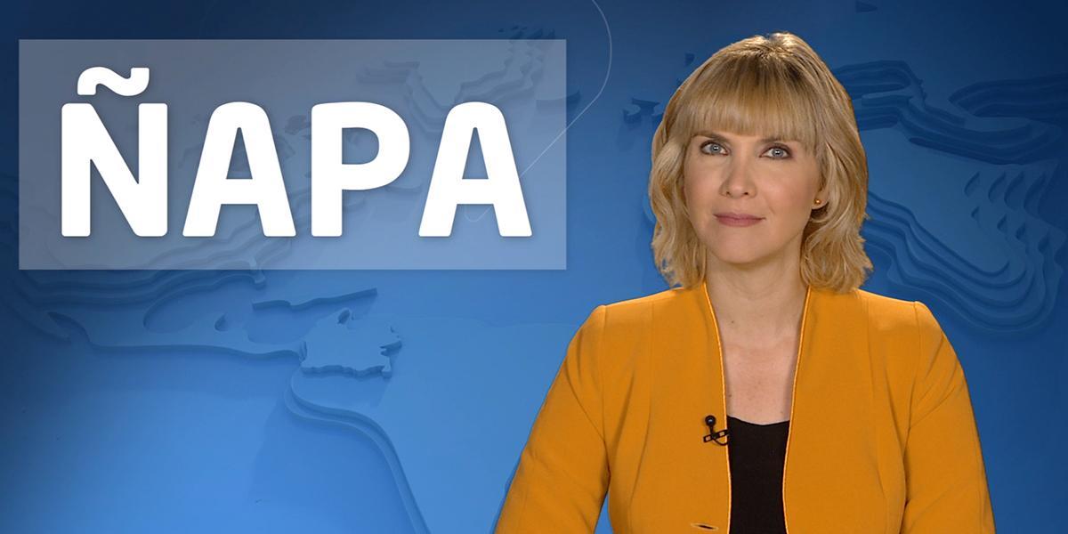 Ñapa Uno | Un grupo especial de la Fiscalía investigará casos de maltrato animal