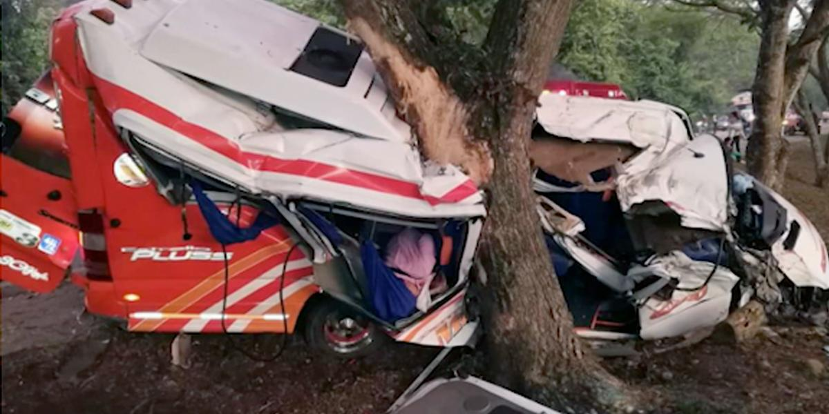 Una vaca causó accidente en la troncal Panamericana: un muerto y 15 heridos